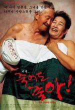 Jukeodo Joha (2002) afişi
