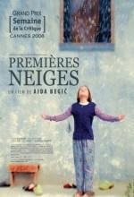 Kar (2008) afişi