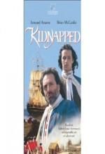 Kidnapped (IV) (1995) afişi