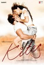 Tehlikeli Aşk (2010) afişi
