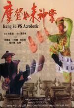 Kung Fu Vs. Acrobatic (1991) afişi