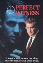 Kusursuz Tanık (1989) afişi