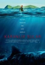 Karanlık Sular (2016) afişi