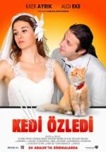 Kedi Özledi (2013) afişi