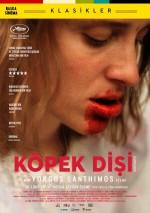 Köpek Dişi (2009) afişi