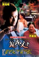 Legend Of The Dragon (2004) afişi