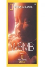 Life Before Birth (2005) afişi