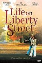Life On Liberty Street (2004) afişi