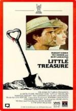 Little Treasure (ı)