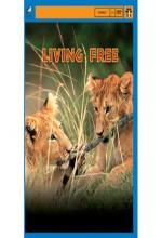 Living Free (1972) afişi