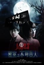 Lost In Panic Room (2010) afişi