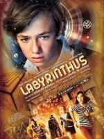 Labirent Oyunu (2014) afişi