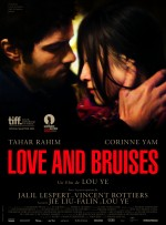 Love and Bruises (2011) afişi