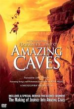 Mağaralara Yolculuk (2001) afişi