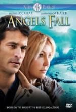 Meleğin Düşüşü (2007) afişi