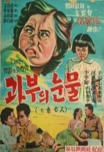 Mimangin (1955) afişi