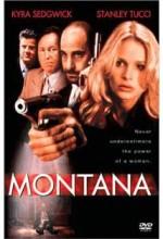 Montana (1998) afişi