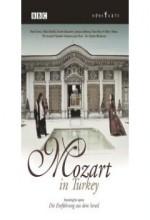 Mozart Türkiye'de (1999) afişi