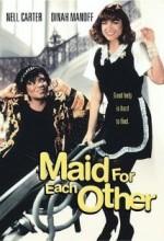 Muhteşem İkili (1992) afişi