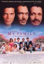 My Family (1995) afişi