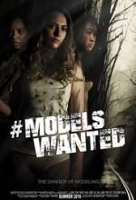 #modelswanted (2016) afişi