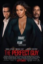 Mükemmel Bir Adam (2015) afişi