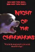 Night Of The Chihuahuas