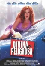 Onunla Bir Gece (2001) afişi