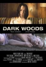 Ormanın Karanlğı (2009) afişi