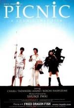 Picnic (1996) afişi