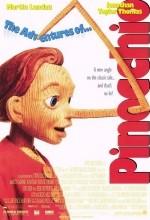 Pinokyo'nun Maceraları (1996) afişi