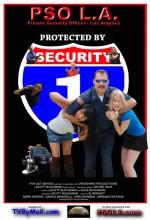 Private Security Officer (2010) afişi