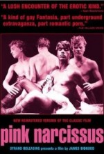 Pink Narcissus (1971) afişi