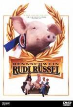Rennschwein Rudi Rüssel (1995) afişi