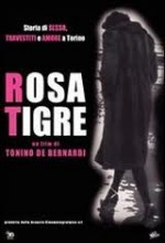 Rosatigre (2000) afişi
