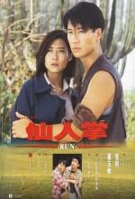 Run (1994) afişi