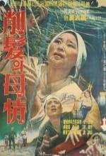 Sakbal Mojeong (1965) afişi