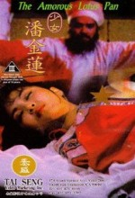 Shao Nu Pan Jin Lian (1994) afişi