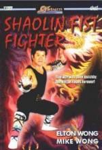 Shaolin Fist Fighter (1980) afişi