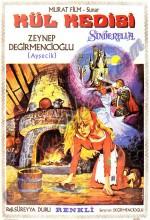 Sinderella Kül Kedisi (1971) afişi