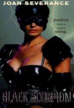 Siyah Akrep (1995) afişi