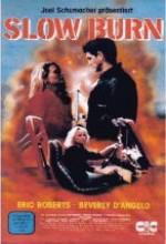 Slow Burn(ı) (1986) afişi