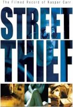 Sokak Hırsızı