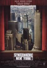 New York Yanılsamaları (2008) afişi