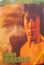 şakacı Karateci (1979) afişi