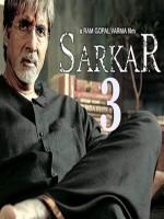 Sarkar 3 (2017) afişi