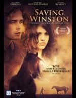 Saving Winston (2011) afişi