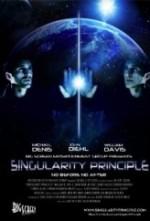 Singularity Principle (2013) afişi