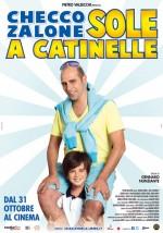 Sole a catinelle (2013) afişi