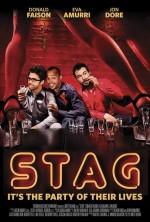 Stag (ı) (2013) afişi
